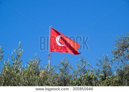 Turkish Flag Against The Blue Sky And The Tops Of The Trees.