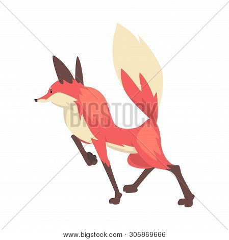Sneaking Red Fox Character Cartoon Vector Illustration