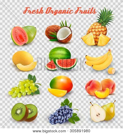 Collection Of Fruit And Berries. Watermelon, Honeydew, Guava, Coconut, Pineapple, Grapes, Mango, Pea