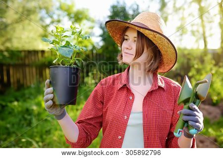 Young Woman Holding Gardening Tools And Seedling In Plastic Pots On The Domestic Garden At Summer Su