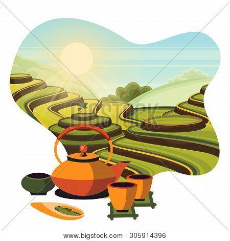 China Tea Green Terrace Fields Plantation. Japanese Tea Ceremony, Vector Cartoon Illustration. Teapo