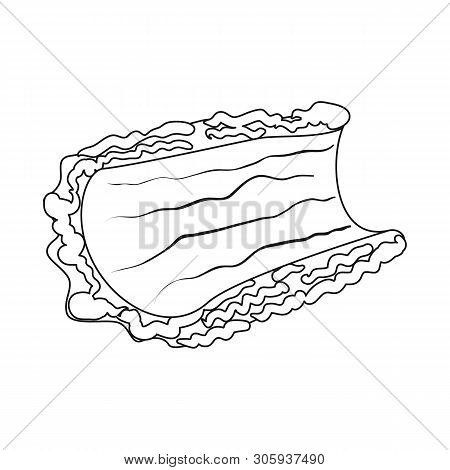 Vector Design Of Bark  And Piece Icon. Collection Of Bark  And Lumber  Vector Icon For Stock.