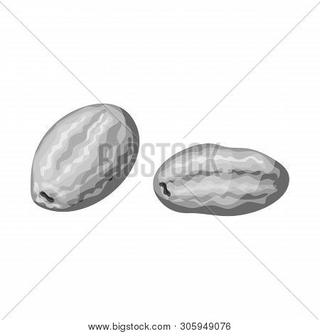 Isolated Object Of Kumquat  And Citrus  Symbol. Set Of Kumquat  And Crop Vector Icon For Stock.