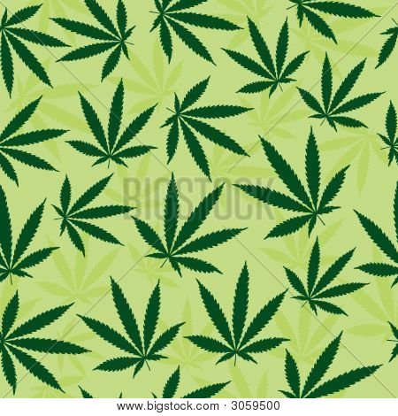 Green Marijuana Leaf Background
