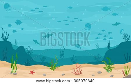Sea Underwater Background. Marine Sea Bottom With Underwater Plants, Corals And Fishs. Panoramic Sea