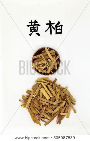 Amur cork tree bark herb used in chinese herbal medicine, has anti bacterial, anti microbial & anti inflammatory properties. Calligraphy script, translation reads as amur cork tree. Huang bai.