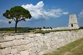 Lone Pine cemetary in Turkey, commemorating th Anzac troops who died at the battle of Gallipoli poster