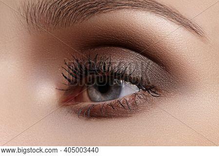 Perfect Shape Of Eyebrows, Brown Eyeshadows And Long Eyelashes. Closeup Macro Shot Of Fashion Smoky