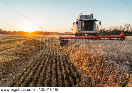 Combine Harvester Harvests Ripe Wheat. Concept Of A Rich Harvest. Agriculture Image