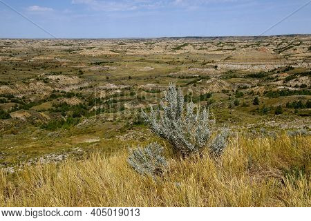 A View Of The Theodore Roosevelt National Park Badlands Scenery Near Medora, North Dakota In The Sum