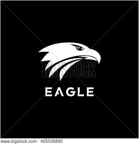 Eagle, Hawk. Falcon Head Logo Design Vector Illustration