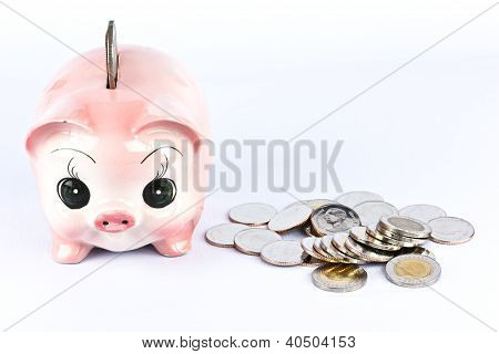 Pink Piggy Bank  And Many Coins.