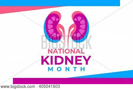 The National Kidney Month Vector Illustration. Two Human Kidneys In An Abstract Trend Style. America