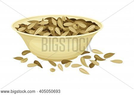 Dried Fennel Fruit As Aromatic Anise-flavored In Bowl Vector Illustration