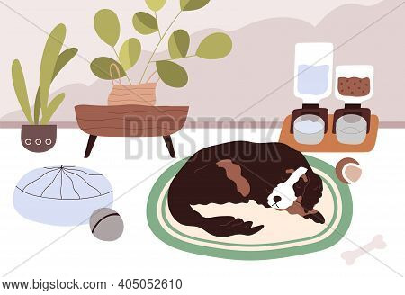 Sleepy Dog Staying Home Alone With Smart Automatic Pet Feeders Or Food Dispensers With Dry Feed And