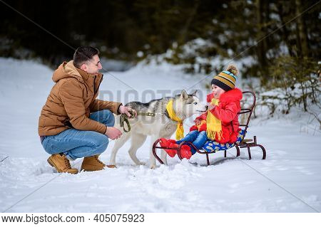 Father With Daughter On A Walk In The Woods, Daughter Sitting On A Sleigh And Playing With A Husky,