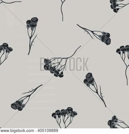 Seamless Pattern With Hand Drawn Stylized Tansy Stock Illustration