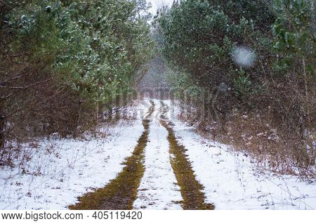 Wide Angle Shot Of The Muddy Trails Made By The Continuous Passage Of Tires In A Country Road Otherw