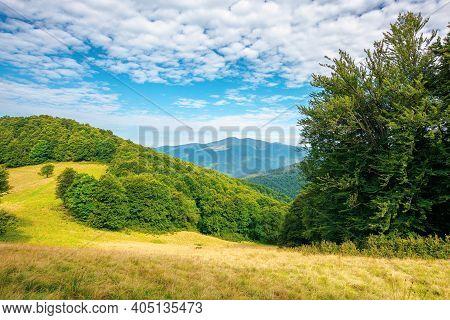Forest And Meadow On The Hill. Beautiful Carpathian Mountain Landscape In Summer. Blyznytsya Peak In