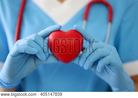 Doctor In Gloves Holds A Red Heart. Diseases Of The Cardiovascular System Concept