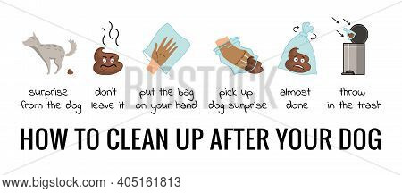 Dog Poo Clean Up Steps Infographic Set. Vector Poster About Hygiene Animal, Toilet Cleaning Informat