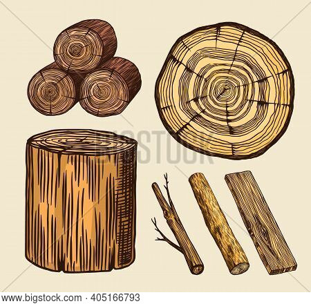 Wood Set. Planks And Logs, Lumber And Cuts, Firewood In Vintage Style. Pieces Of Tree. Vector Illusi