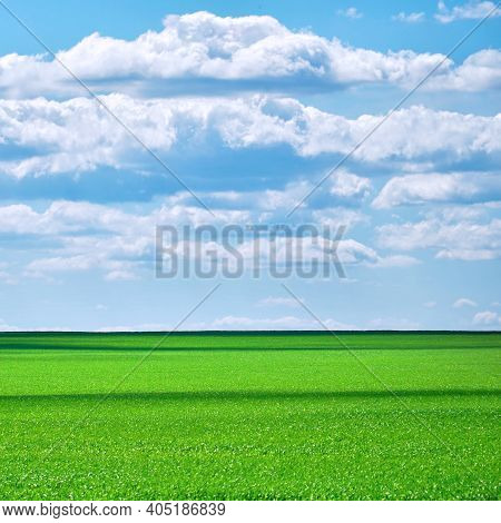 Green Field Against A Cloudy Sky In Sunny Weather