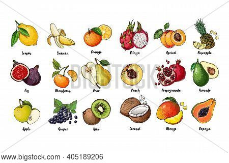 Set Of Fruits Drawn A Line On A White Background. Vector Sketch. Sketch Line. Pitaya, Apricot, Pinea
