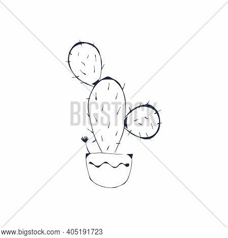 Cactus, Succulent Plant Black Outline Hand Drawn Isolate On White Background. Sketch, Doodle Cactus