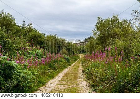Path At Bonny Glen In County Donegal - Ireland.
