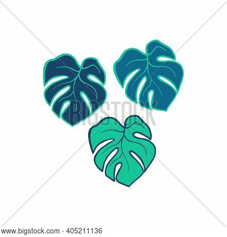Exotic Plant Leaves Isolate On White Background, Tropical Floral Leaves Hand Drawn. Cartoon Monstera