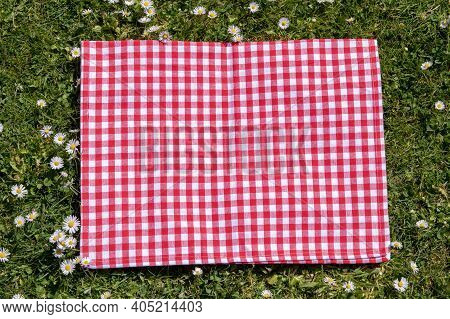 Red Picnic Cloth. Red Checked Picnic Blanket On A Meadow With Daisies In Bloom. Beautiful Backdrop F