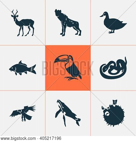 Fauna Icons Set With Carp, Snake, Whale And Other Mallard Elements. Isolated Illustration Fauna Icon