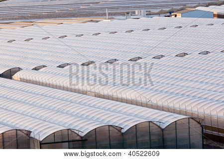 Industrial greenhouse to grow off-season veggies