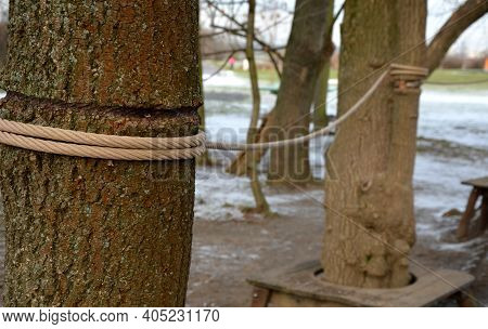 Rope Attractions On The Playground In The Crowns And Trunks Of Trees Without Regular Inspection, The