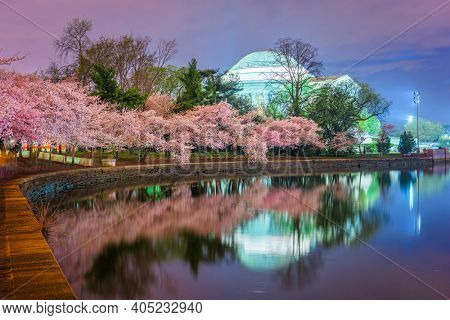 Washington, DC at the Tidal Basin during the spring cherry blossom season.