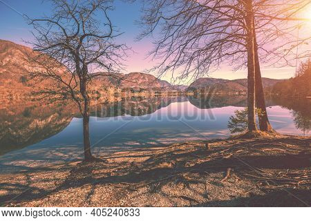 Mountain Lake In Early Spring. Lake Bohinj. Beautiful Nature Of Slovenia