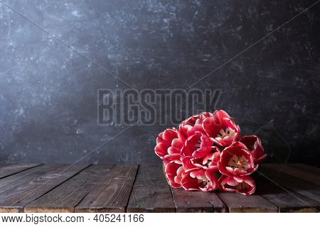 Bunch Of Fresh Red Tulips On Wooden Vintage Planks In Front Of Gray Concrete Wall. Background For Mo
