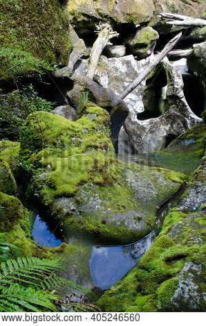 The Chasm In Fiordland National Park. Southland. South Island. New Zealand.