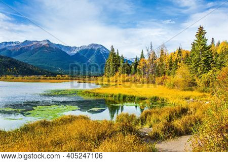 Lake Vermillon among the yellow fall grass and foliage of birches. Travel to autumn. Grandiose landscape in the Rocky Mountains of Canada. The concept of ecological and photo tourism