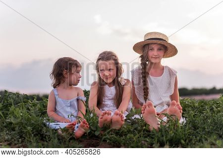 Three Sisters In White Sundresses Are Sitting On Green Meadow. Girls Play In Blooming Field Of Purpl