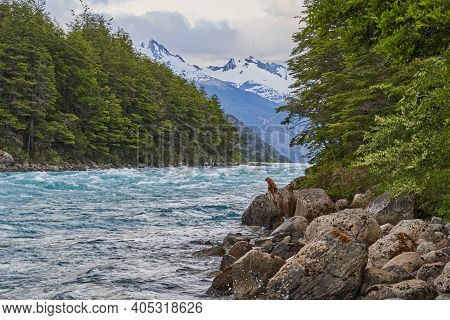 Rapids Of Wild River Rio Baker Streaming Down Along The Carretera Austral In Patagonia, Chile, South