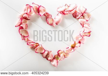 Heart Shaped Rose Petals. Heart Made Of Flowers On A White Background.