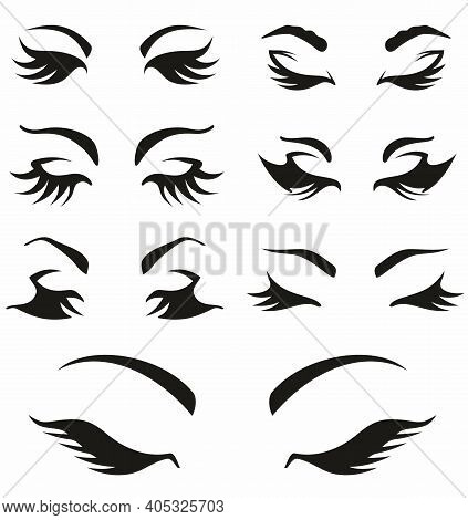 Woman's Sexy Luxurious Eye With Perfectly Shaped Eyebrows And  Lashes