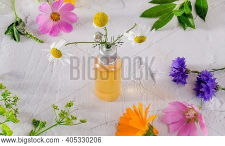 Bottle With Herbal Essence And Wild Flowers On White Textured Background. Naturopathy Concept