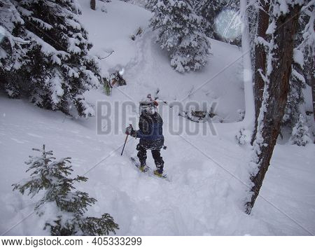 Ski Tour In A Winter Forest