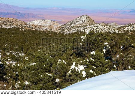 Alpine Meadow Covered With Snow Besides A Pine Forest Overlooking The Mojave Desert Taken In The Rur