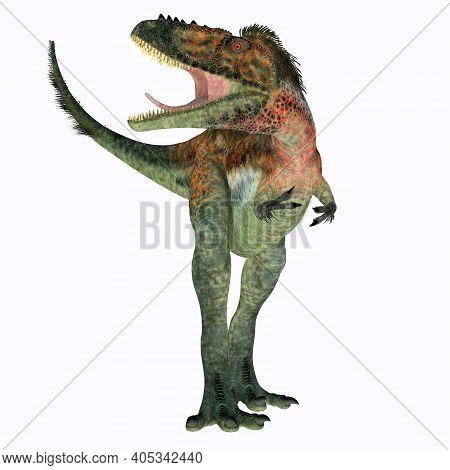 Alioramus Dinosaur Front 3d Illustration - Alioramus Remotus Was A Theropod Carnivorous Dinosaur Tha