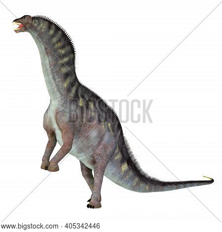 Amargasaurus Cazaui Dinosaur 3d Illustration - Amargasaurus Was A Sauropod Herbivorous Dinosaur That