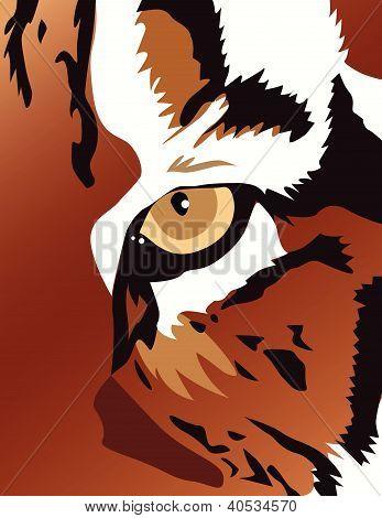 Tiger eye vector illustration